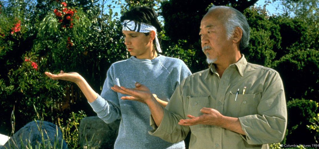 The Karate Kid at Hitchin Lavender